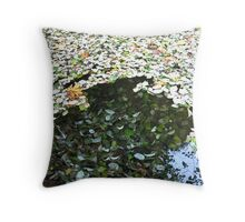 surface appearances Throw Pillow