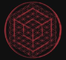 Tesseract & Flower of Life  by John Girvan