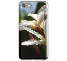 White plumeria #4, Big Island, Hawaii iPhone Case/Skin