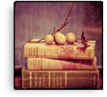 Light Reading Canvas Print
