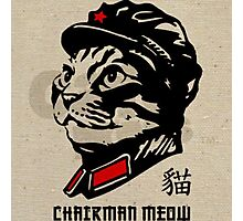 Chairman Meow Photographic Print