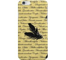 Manuscript with Feathers iPhone Case/Skin