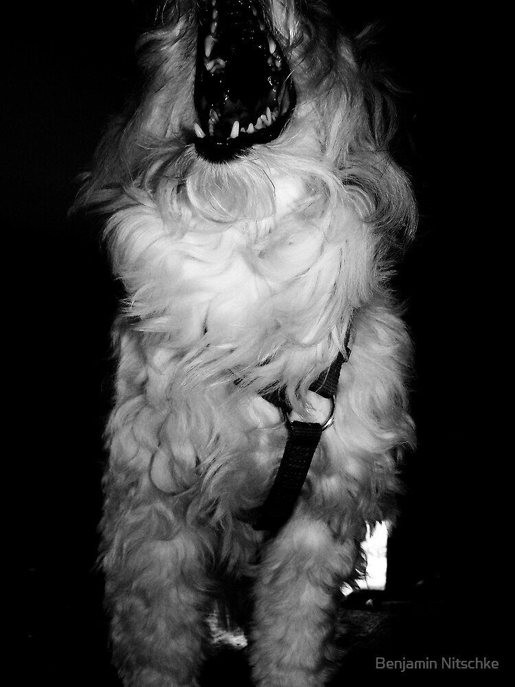 Rampaging Beast by Benjamin Nitschke