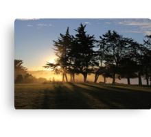 Together We Stand Limbs Outstretched Facing the Sunset Of Another Glorious Day Canvas Print