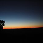 Outback at dusk by MarianH