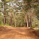 Road through the ranges by georgieboy98