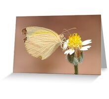 little yellow butterfly Greeting Card