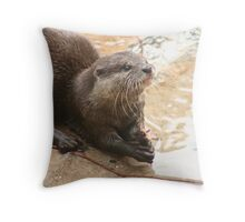 Lunchtime! Throw Pillow