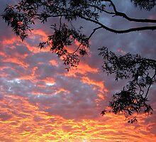 July Sunset by Kathie Nichols