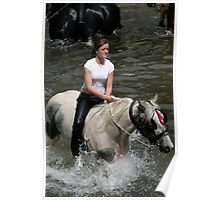 Washing a horse in the Eden, Appleby Horse Fair, 2006 Poster