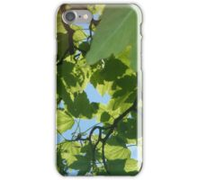 Phone case nature  iPhone Case/Skin