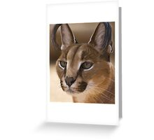 Stylized photo of a  Caracal Greeting Card