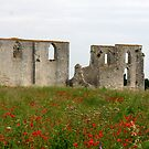 l'Abbaye de Châteliers by Pamela Jayne Smith
