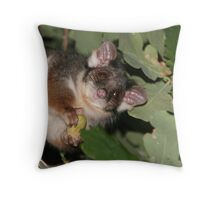 The best set of whiskers in the world Throw Pillow