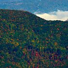 Blue Ridge Parkway, North Carolina by fauselr