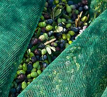 Olives2 by dominiquelandau