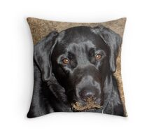 What Hole? Throw Pillow