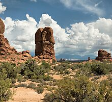 Balancing Rock, Arches National Park by Bryan Peterson