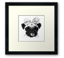Funny Pug Dog with a bow Framed Print