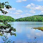 Lake Lurleen by RickDavis