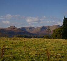 Glen Luss by Susan Dailey