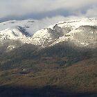 Jura Mountains by Abi Skeates