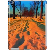 Winter avenue trail at sundown | landscape photography iPad Case/Skin