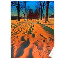 Winter avenue trail at sundown | landscape photography Poster