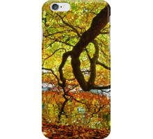Perception of Autumn iPhone Case/Skin