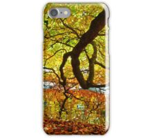 Perception of Autumn iPhone Case/Skin