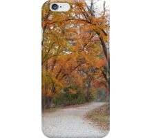 Lost Maples State Park Trail 5 iPhone Case/Skin