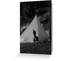 Mosquito Tent Greeting Card