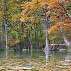Texas Hill Country Colors 3 by RobGreebonPhoto