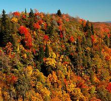 Ridge line, Blue Ridge Parkway, North Carolina by fauselr