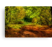 Once upon a time deep in the forest .....  Canvas Print