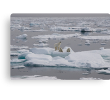 Going With The Floe! Canvas Print