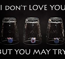 I don't love you but you may try by luckypixel