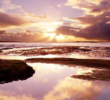 Rockpool Reflection 2 by Nick Ford