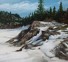 Frozen Cove at Heron Bay by loralea