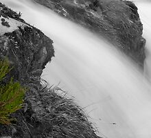 Scottish Heather against a waterfall by gedo