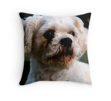 Pose with elegance Throw Pillow