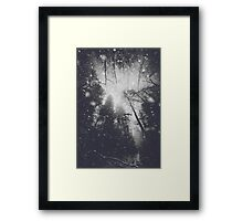 Will you let me pass II Framed Print