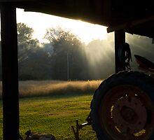 On The Farm by Amanda Jordan