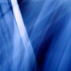 Lightscape II: Oceanic by Veronica Hoffman