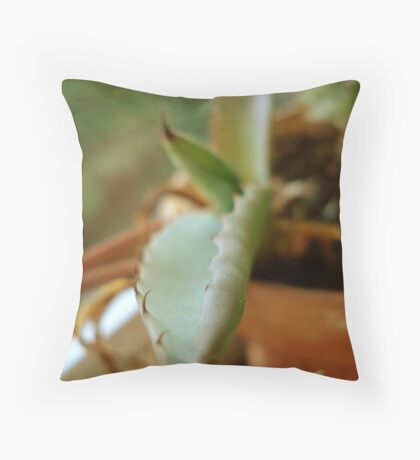 A Prickly Pet Throw Pillow