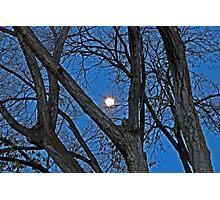 Morning Moon Photographic Print