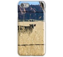 Cow in a Field iPhone Case/Skin