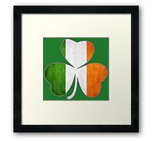 Tricolor Shamrock Framed Print