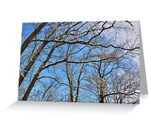 Winter in the Forest I Greeting Card