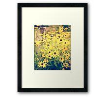 Golden Yellow  Framed Print